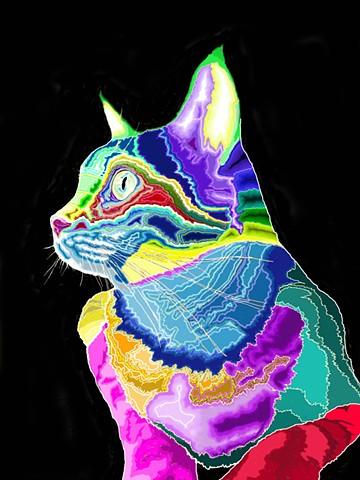 Beth's Cat
