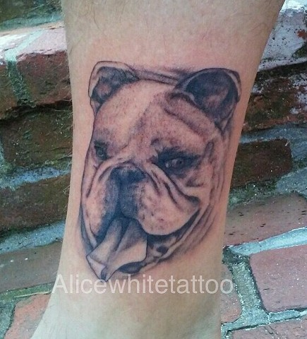 bulldog tattoo, portrait tattoo, dog portrait tattoo, black and gray tattoo, bulldog portrait, Provincetown tattoo, Cape Cod tattoo, Ptown tattoo, truro tattoo, wellfleet tattoo, custom tattoo, coastline tattoo