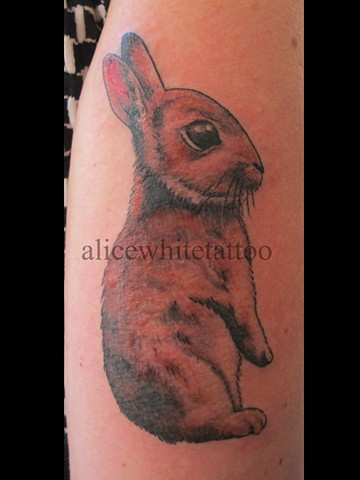 Alice White - Bunny tattoo, Provincetown tattoo, Cape Cod tattoo, Ptown tattoo, truro tattoo, wellfleet tattoo, custom tattoo, coastline tattoo