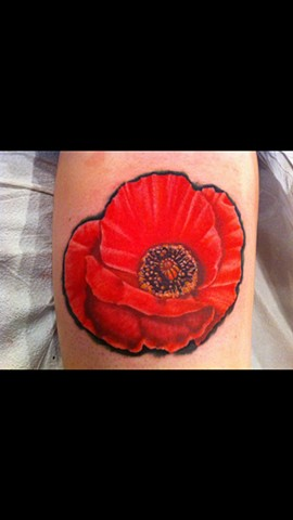 Cindy Vega - poppy tattoo, Provincetown tattoo, Cape Cod tattoo, Ptown tattoo, truro tattoo, wellfleet tattoo, custom tattoo, coastline tattoo