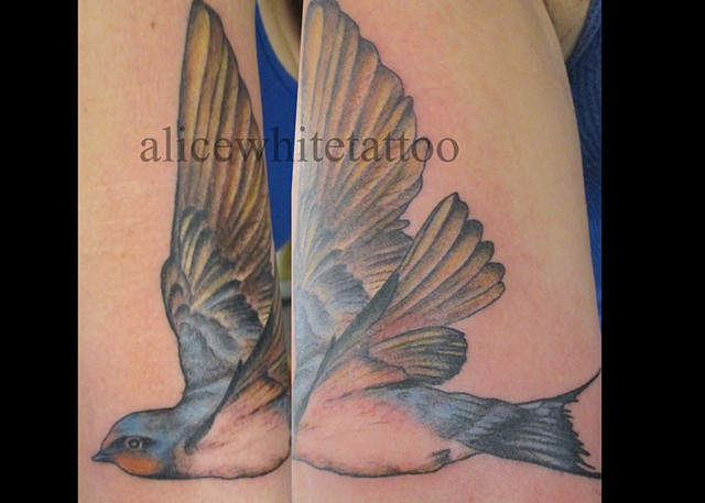Alice White - Barn Swallow, Provincetown tattoo, Cape Cod tattoo, Ptown tattoo, truro tattoo, wellfleet tattoo, custom tattoo, coastline tattoo