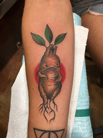 mandrake tattoo, harry potter tattoo, Provincetown tattoo, Cape Cod tattoo, Ptown tattoo, truro, wellfleet, custom tattoo, coastline tattoo