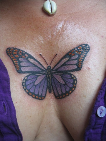 butterfly chest, custom tattoo, Provincetown, Cape Cod, Coastline, Ptown