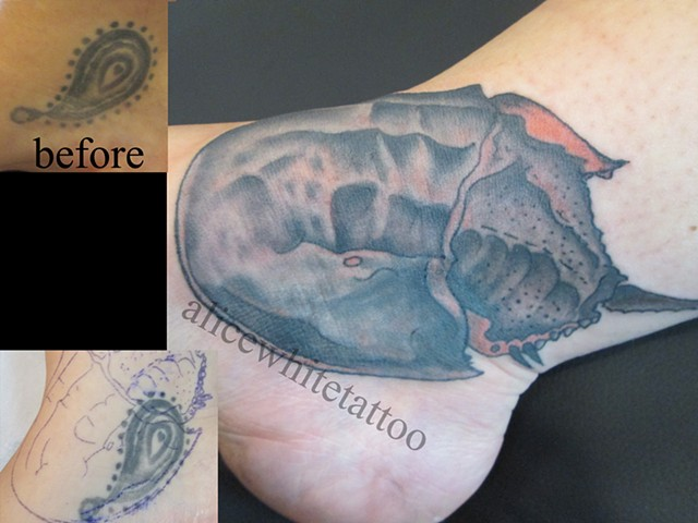 Alice White - Horseshoe crab cover-up tattoo, Provincetown tattoo, Cape Cod tattoo, Ptown tattoo, truro tattoo, wellfleet tattoo, custom tattoo, coastline tattoo