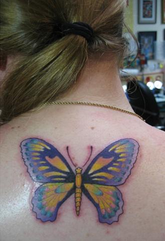butterfly, custom tattoo, Provincetown, Cape Cod, Coastline, Ptown