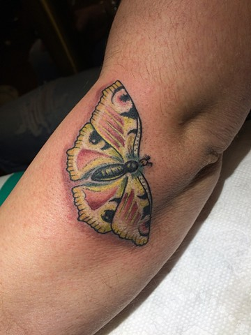 moth tattoo, Provincetown tattoo, Cape Cod tattoo, Ptown tattoo, truro, wellfleet, custom tattoo, coastline tattoo