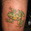 tree frog, custom tattoo, Provincetown, Cape Cod, Coastline, Ptown