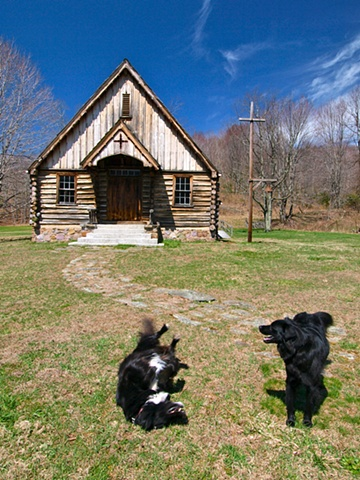 Log Church Dogs