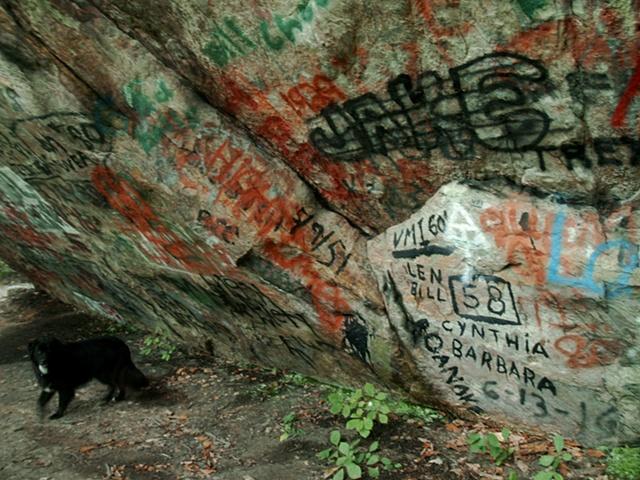 Hayrock Graffiti Bowie