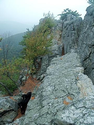 Atop Seneca Rocks