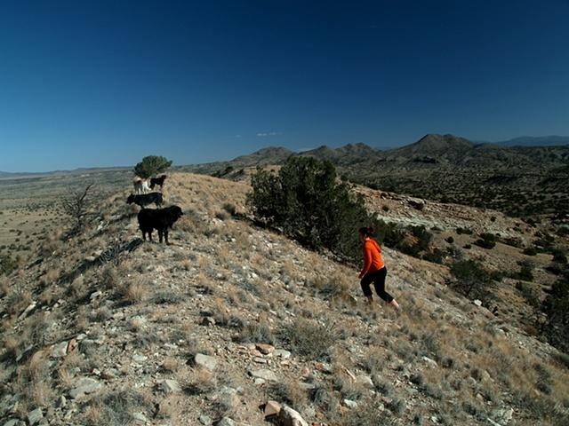 Summiting the Backyard Cliffs