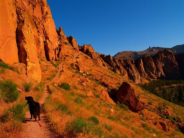 Misery Ridge Trail