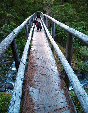 Big Tree Bridge