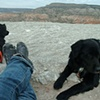 Ghost Ranch Dogs