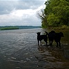 Susquehanna River Brothers