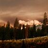 Storm at Dawn