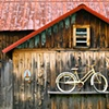 Bicycle Barn