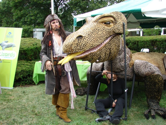 Komodo Dragon Puppet with Pirate