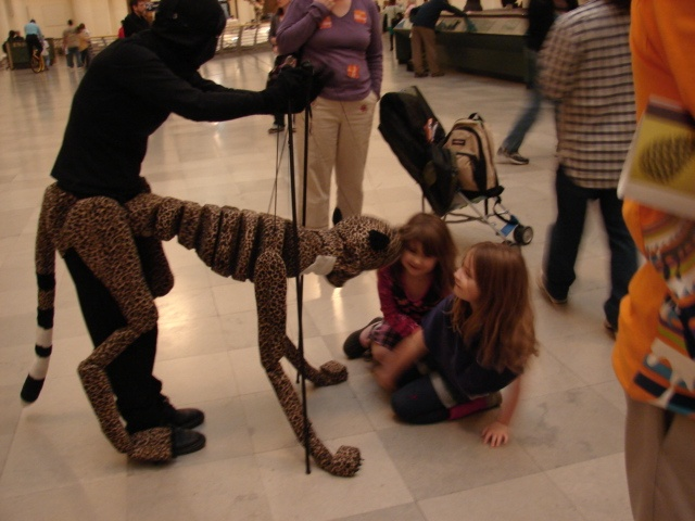 Cheetah with Museums Guests