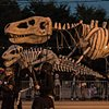 T-Rex Parade Puppets