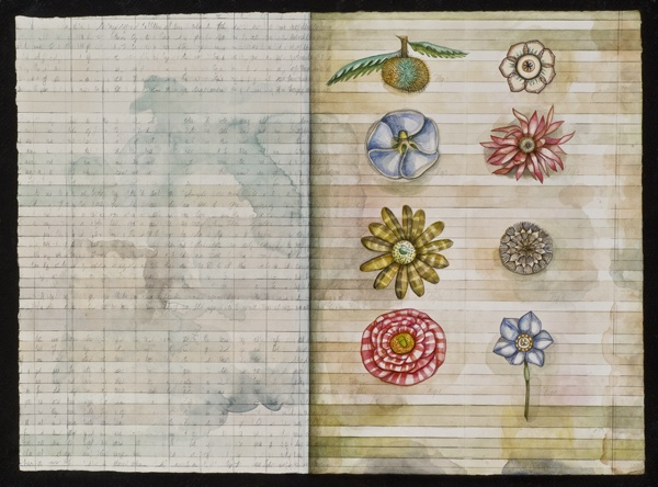Botanical Notebook Page #24