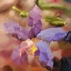 Centaury Flower