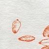 Wheat (diptych)