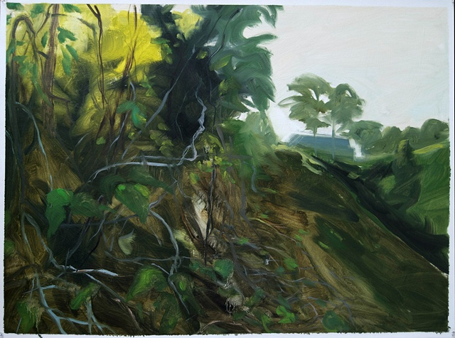 Study for Kudzu and Princess Tree