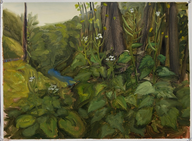 Study for Garlic Mustard