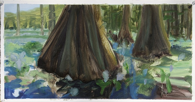 Study for Water Hyacinths # 2
