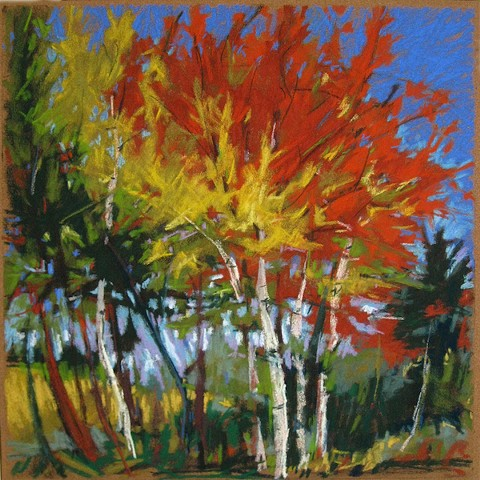 vibrant autumn trees pastel Maine Landscape fall