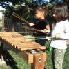 Children playing Nature Explore Marimba