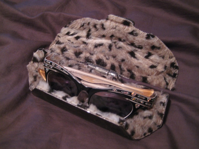 Custom Eyeglass Case #1