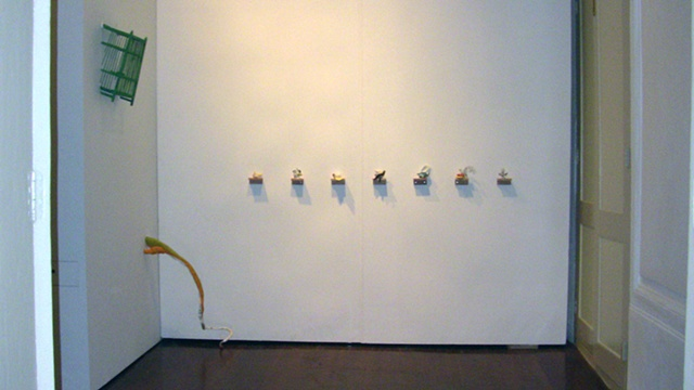 Dreams of Wings - installation view 2