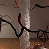 """If a tree falls.."" installation view 2"