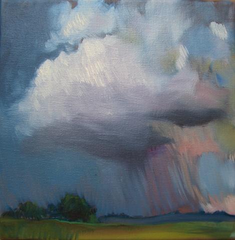 Summer storm over pasture