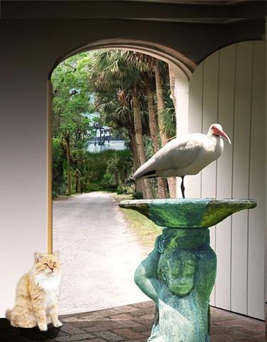 Ranji and ibis
