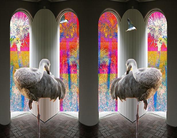 Sandhill Cranes in Wonder Place