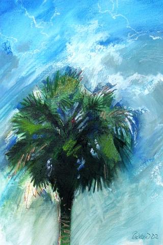 Bonnie Palm 4