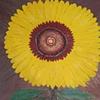 Sunflower 6