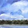 Turmoil Over Newnan's Lake