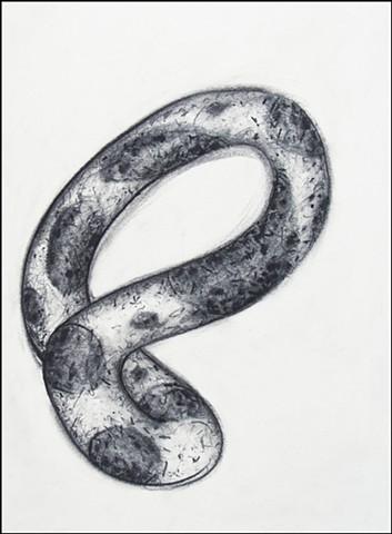 Loop #8