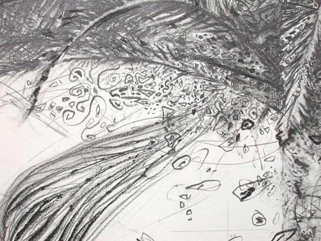 Big Palm - Detail