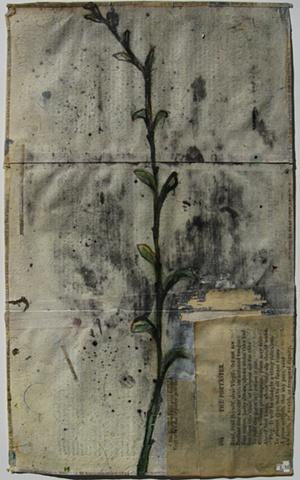 Untitled (branch)