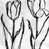 Flora No. 25