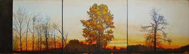 Canadian sunset painting