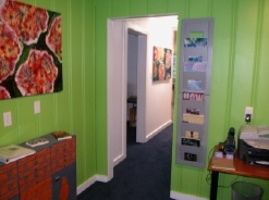 MOXY office painted in WICKED green