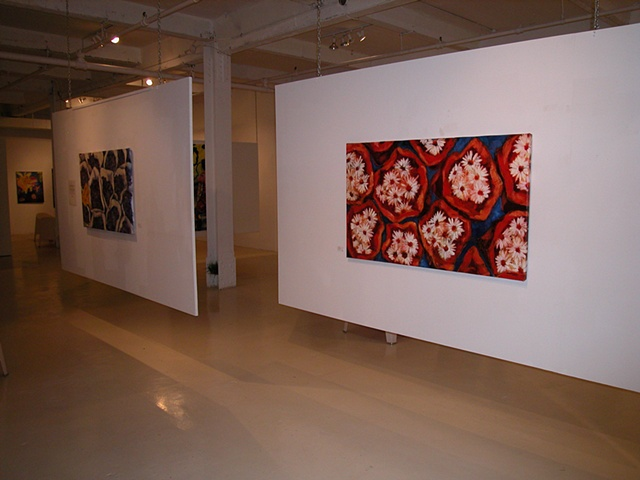 Installation at Gallery Gora