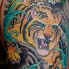 Mike's Tiger