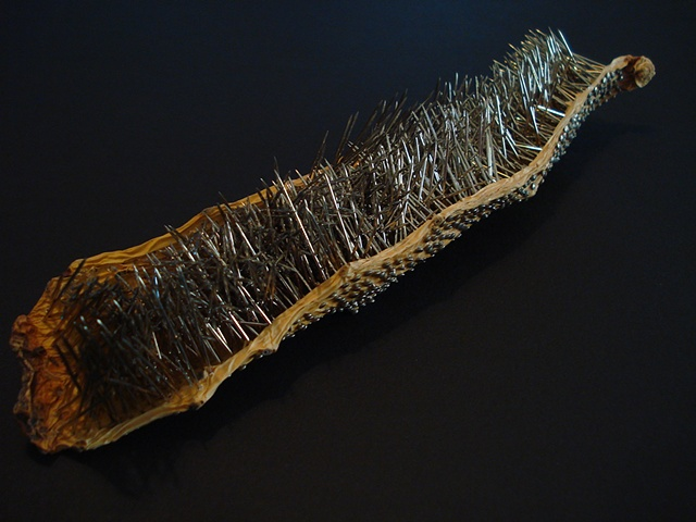 Untitled Cactus Leaf 6 (2nd view)